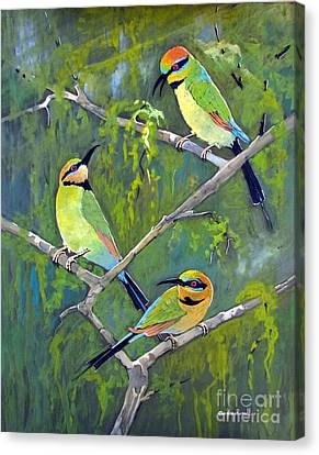 Rainbow Bee-eaters Canvas Print by Audrey Russill
