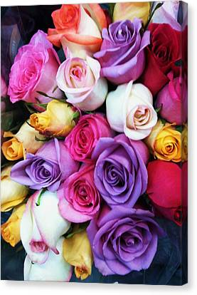 Rainbow Rose Bouquet Canvas Print by Anna Villarreal Garbis