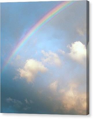 Rainbow Canvas Print by Sally Stevens