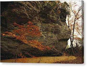 Raven Rock, Trail, And Autumn Colored Canvas Print by Raymond Gehman