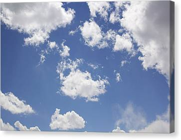 Reach For The Sky Canvas Print by Mike McGlothlen