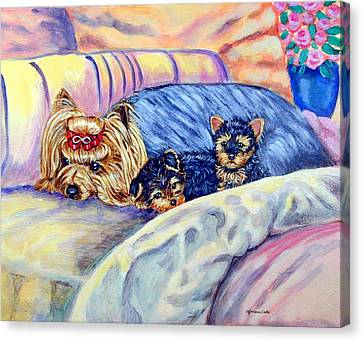 Ready For Bed - Yorkshire Terrier Canvas Print by Lyn Cook