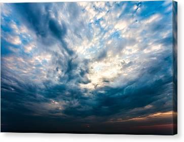 Reawakening Canvas Print by Anthony Rego