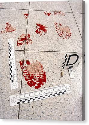 Recording Evidence Canvas Print by Mauro Fermariello
