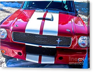 Red 1966 Mustang Shelby Canvas Print by James BO  Insogna