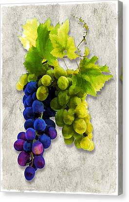 Red And White Grapes Canvas Print by Elaine Plesser