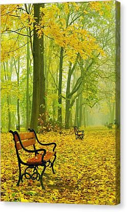 Red Benches In The Park Canvas Print by Jaroslaw Grudzinski