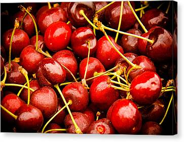 Red Cherries Canvas Print by Jen Morrison