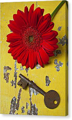 Red Daisy And Old Key Canvas Print by Garry Gay