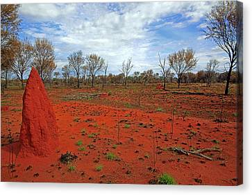 Red Earth Canvas Print by James Mcinnes