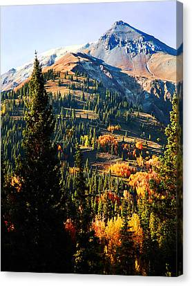 Red Mountain Project Canvas Print by Terril Heilman