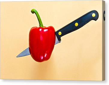 Red Pepper Canvas Print by Tom Gowanlock