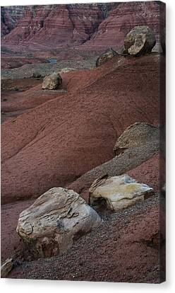 Red Rock Desert Canvas Print by Dave Dilli