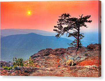 Red Sky Over Ravens Roost Fx Canvas Print by Dan Carmichael