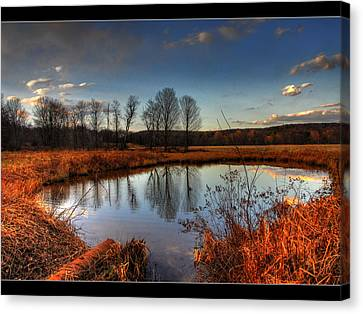 Reflect Upon Canvas Print by Chris Hartman Price