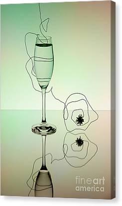 Reflection 02 Canvas Print by Nailia Schwarz