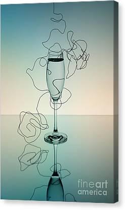 Reflection 03 Canvas Print by Nailia Schwarz