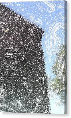 Reflection 2 Canvas Print by Sara Walsh