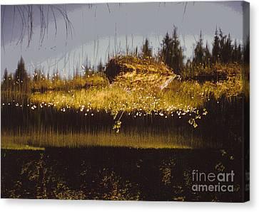 Reflection Canvas Print by Alcina Morello