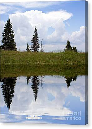 Reflection Of Lake Canvas Print by Odon Czintos