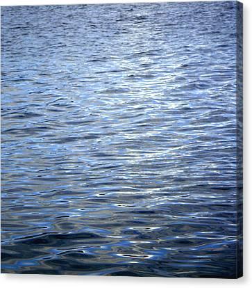 Reflections On Brasilia Canvas Print by Roberto Alamino