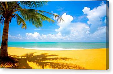 Relaxing On The Beach Canvas Print by Robert Anderson