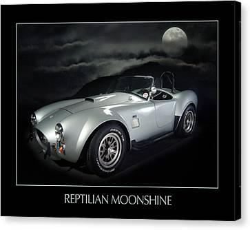 Reptilian Moonshine Canvas Print by Robert Twine