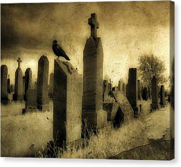 Rest Blackbird Canvas Print by Gothicolors Donna Snyder