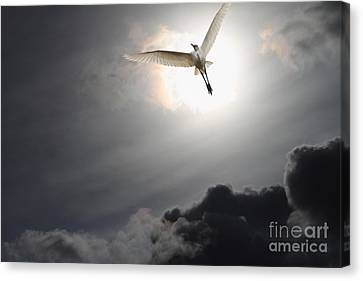 Return To Eternity Canvas Print by Wingsdomain Art and Photography