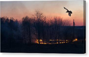 Ring Of Fire. Canvas Print by Kelly Nelson