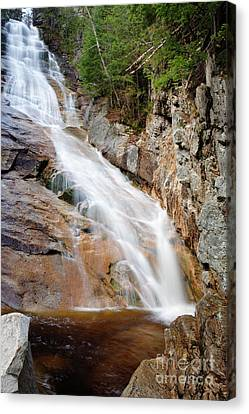 Ripley Falls - Crawford Notch State Park New Hampshire Usa Canvas Print by Erin Paul Donovan