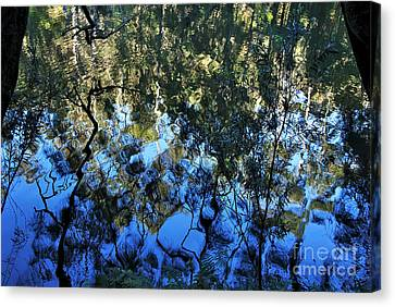Ripples And Reflections Canvas Print by Kaye Menner