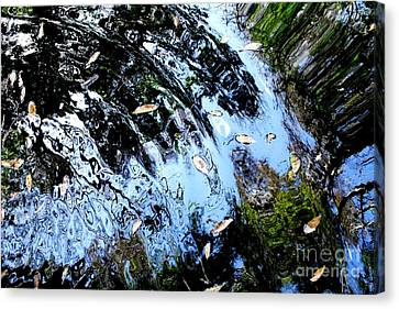 Ripples And Reflections Canvas Print by Theresa Willingham