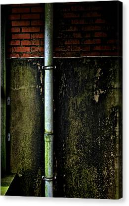 Rising Damp Canvas Print by Odd Jeppesen