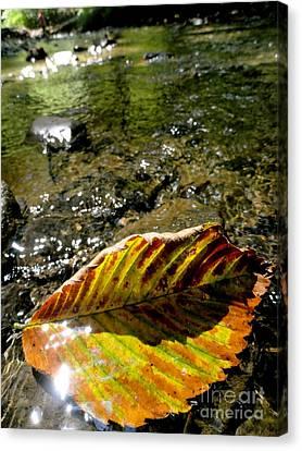 Riverwalkers Canvas Print by Trish Hale