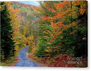 Road Through Autumn Woods Canvas Print by Larry Landolfi and Photo Researchers