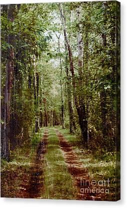 Road To Anywhere Canvas Print by Bob Senesac