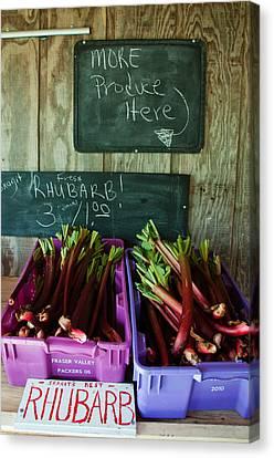 Roadside Produce Stand Rhubarb Canvas Print by Denise Lett