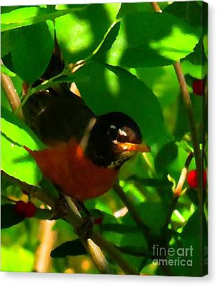 Robin Peeping Through Leaves Faux Oil Canvas Print by Rrrose Pix
