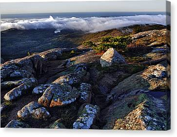 Rock And Fog Canvas Print by Rick Berk