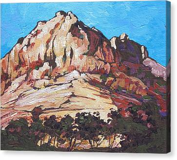 Rock Face 2 Canvas Print by Sandy Tracey
