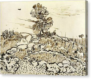 Rocky Ground At Montmajour Canvas Print by Vincent van Gogh