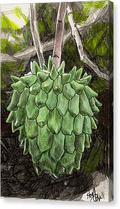 Rollinia Canvas Print by Steve Asbell
