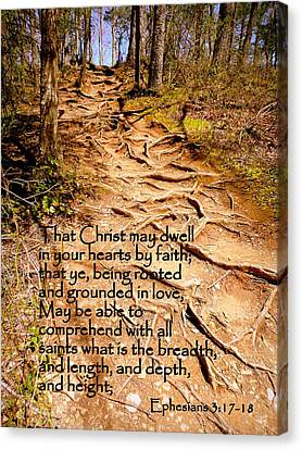Rooted Path With Scripture Canvas Print by Cindy Wright