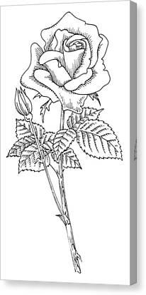 Rose, Lino Print Canvas Print by Gary Hincks