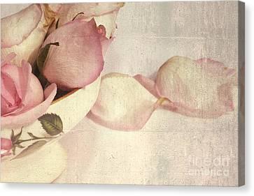 Roses Canvas Print by Sophie Vigneault