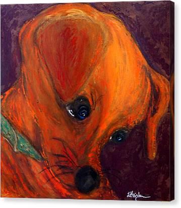 Roxie's New Portrait Canvas Print by Laura  Grisham