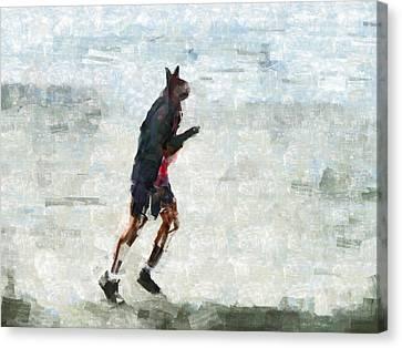 Run Rabbit Run Canvas Print by Steve Taylor