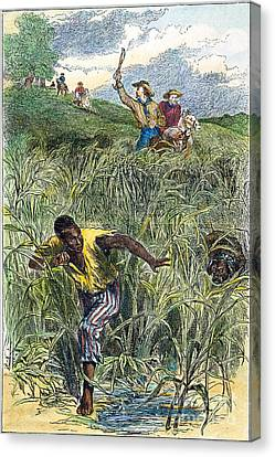 Runaway Slave Hunt Canvas Print by Granger