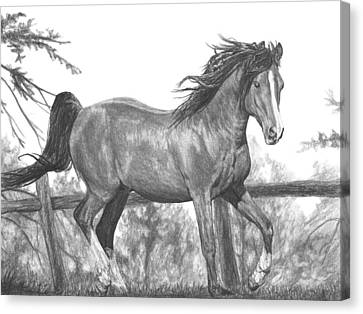 Running Horses Canvas Print featuring the drawing Running Horse by Bobby Shaw